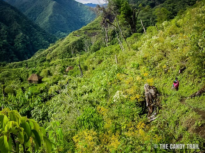 fields-vilcabamba-trek-peru