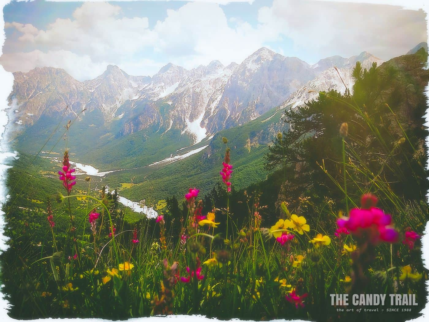 valbona-hike-mountain-flowers-albania