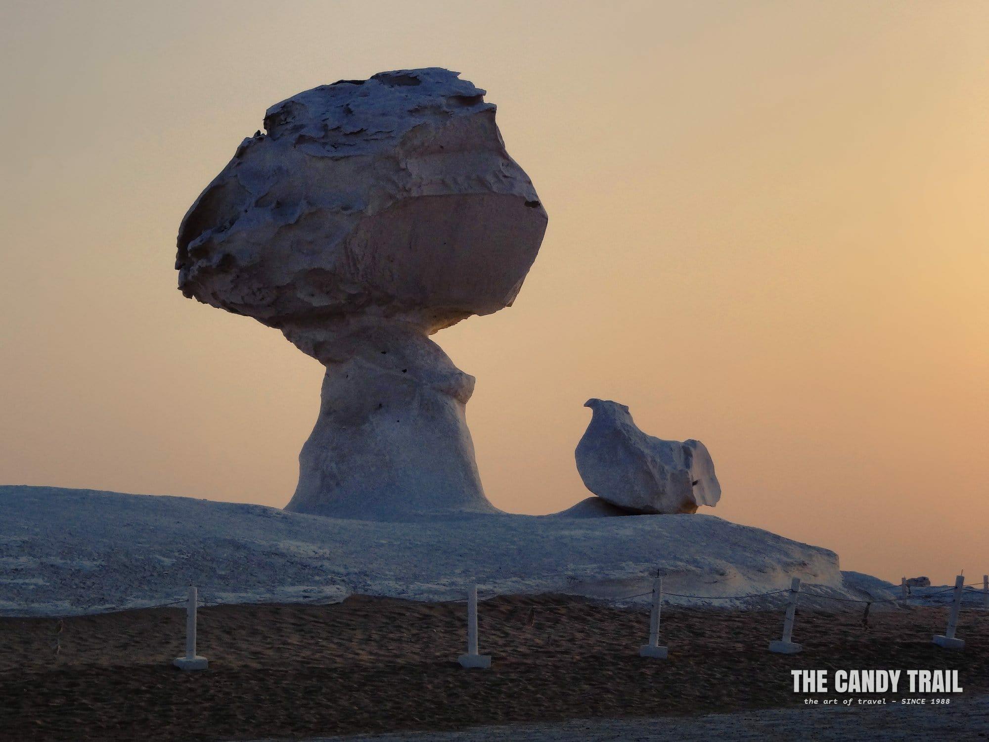 chicken shaped rock white desert egypt