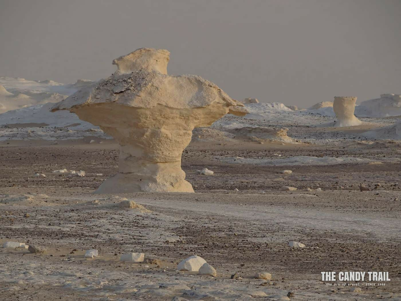 """""""The Mushroom"""" rock in the White Desert Egypt"""
