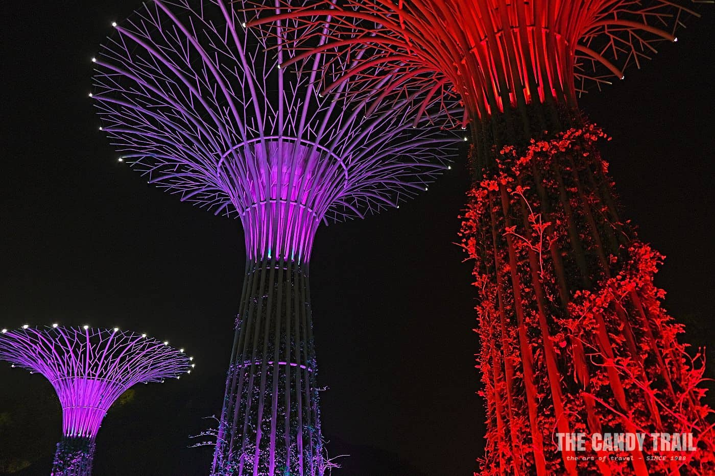 brightly lit tree sculptures in morganshan park china